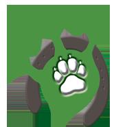 Logo Gekrakel für Stephanie Desch
